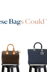 If These Bags Could Talk: 6 Celebrity Bag Moments LXRCO