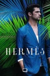 A Hermès Fashion Fairy Tale